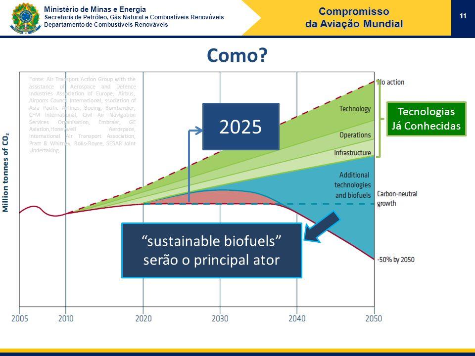 sustainable biofuels serão o principal ator