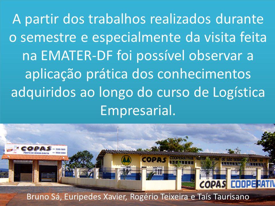 Bruno Sá, Euripedes Xavier, Rogério Teixeira e Taís Taurisano