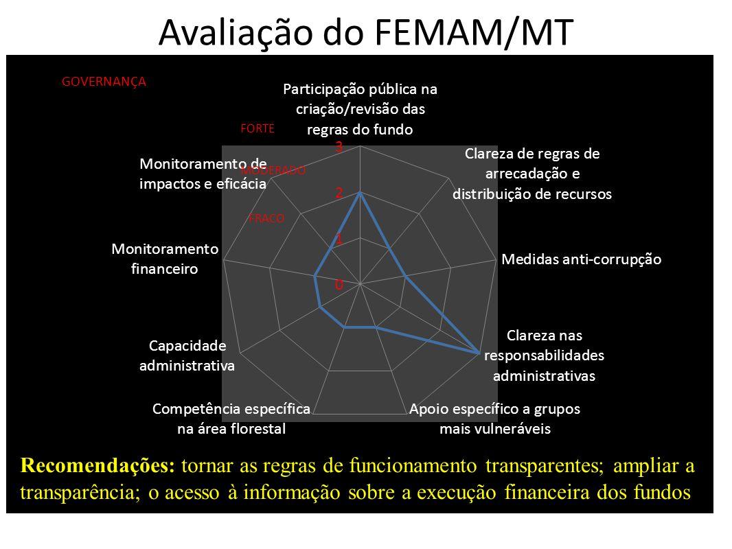 Avaliação do FEMAM/MT