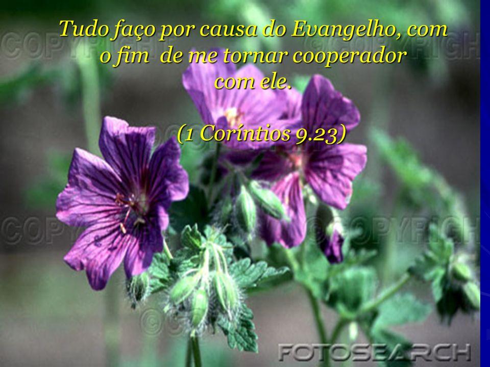 Tudo faço por causa do Evangelho, com o fim de me tornar cooperador com ele. (1 Coríntios 9.23)