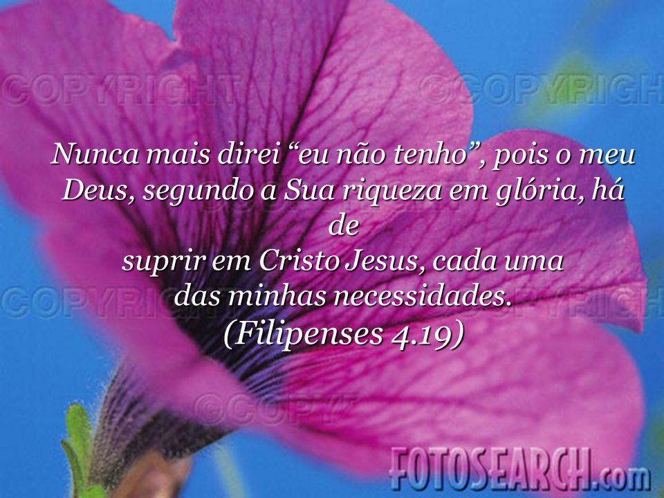 Nunca mais direi eu não tenho , pois o meu Deus, segundo a Sua riqueza em glória, há de suprir em Cristo Jesus, cada uma das minhas necessidades.
