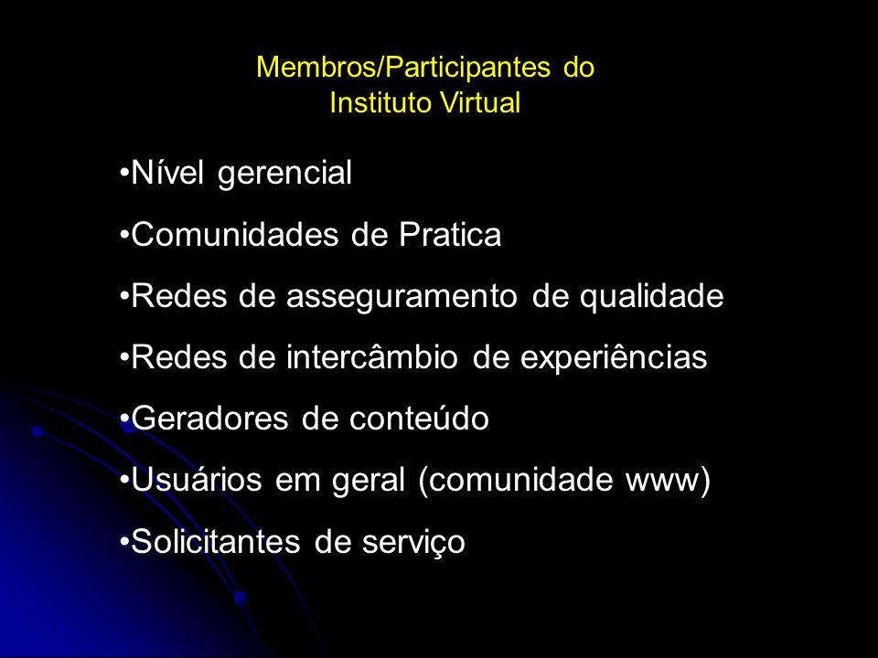 Membros/Participantes do Instituto Virtual