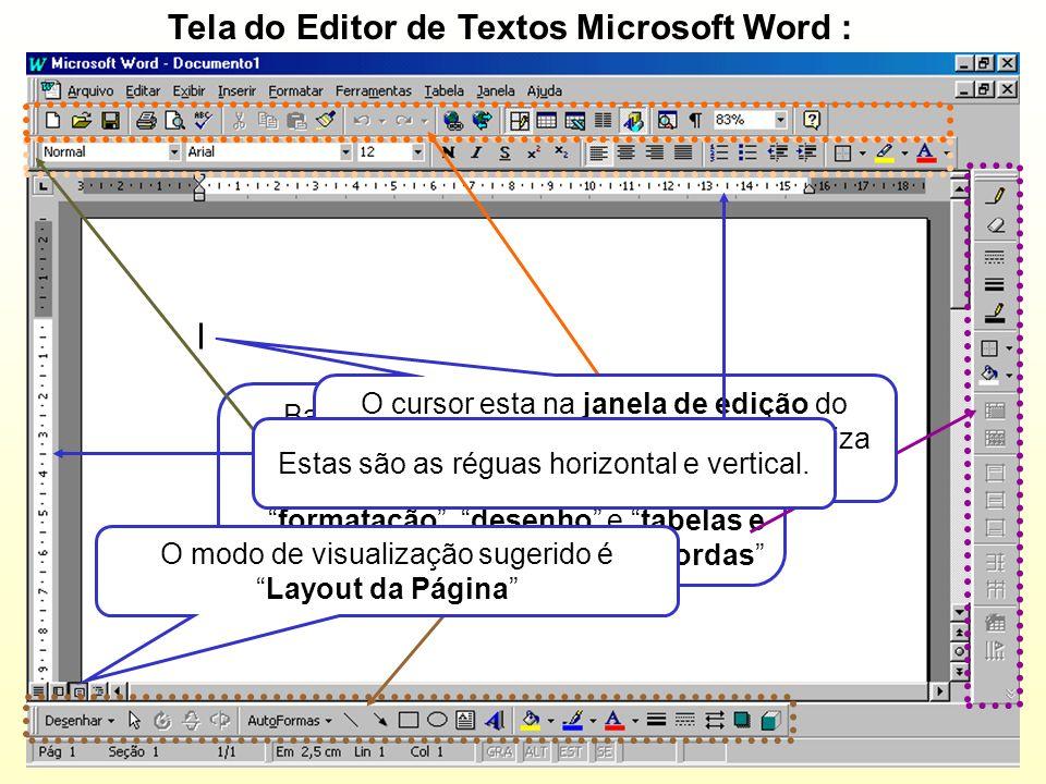 Tela do Editor de Textos Microsoft Word :