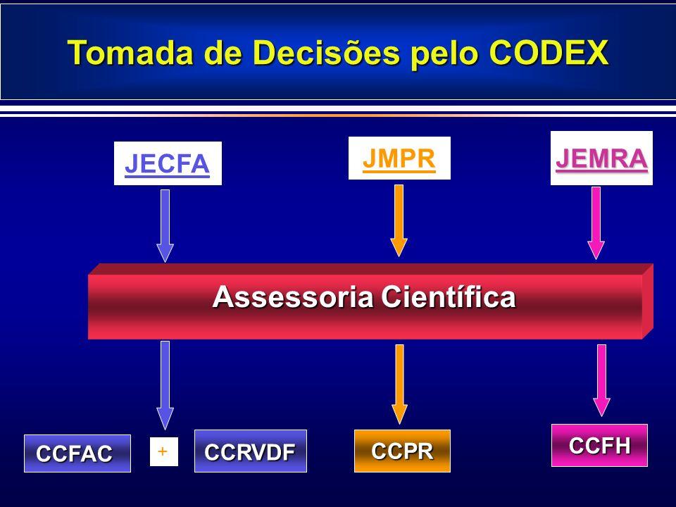 Tomada de Decisões pelo CODEX Assessoria Científica