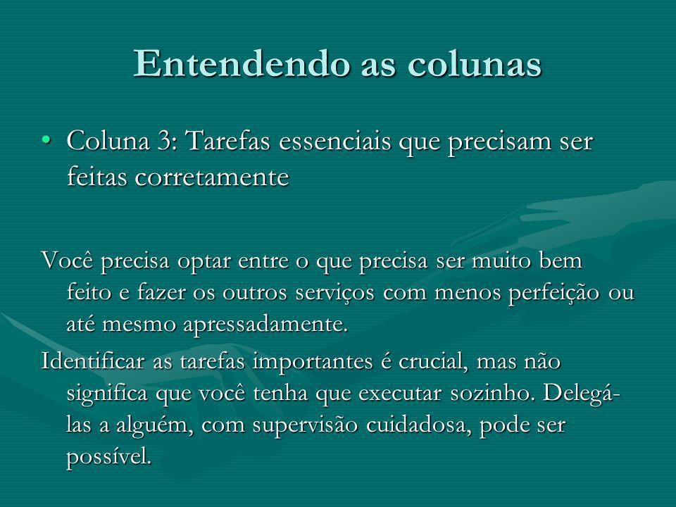 Entendendo as colunas Coluna 3: Tarefas essenciais que precisam ser feitas corretamente.