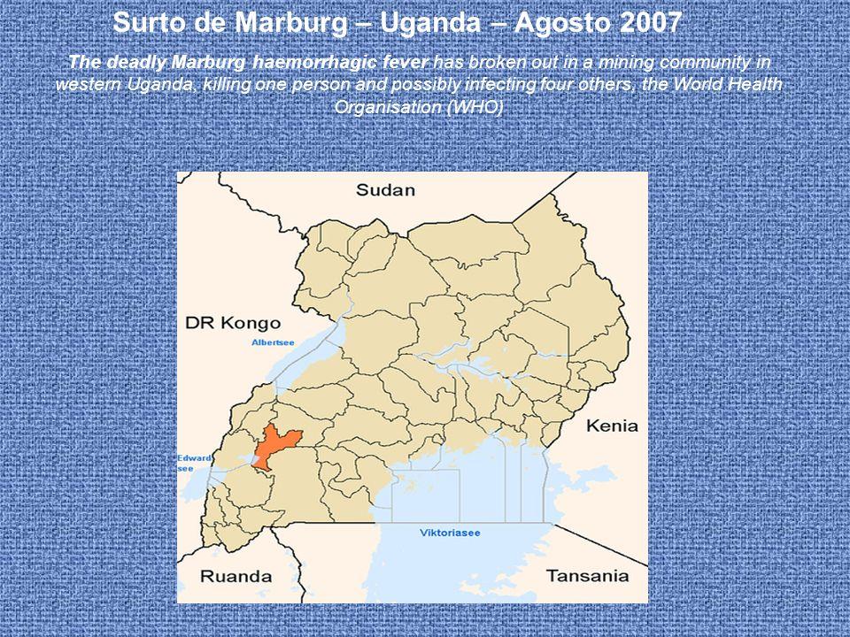 Surto de Marburg – Uganda – Agosto 2007