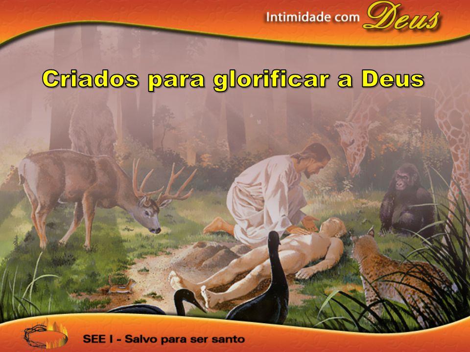 Criados para glorificar a Deus