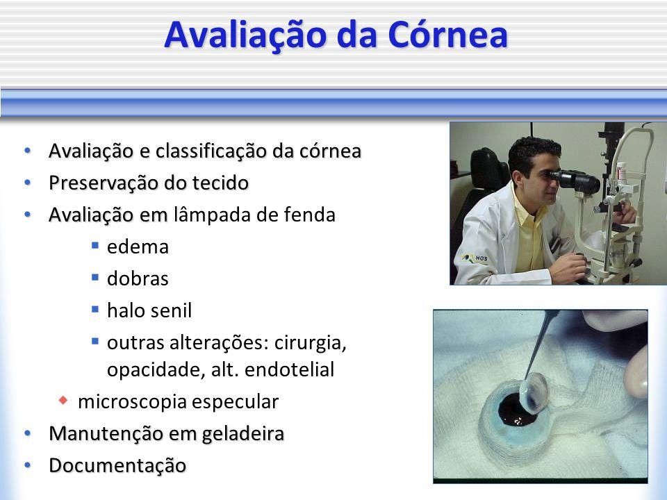 Avaliação da Córnea Avaliação e classificação da córnea