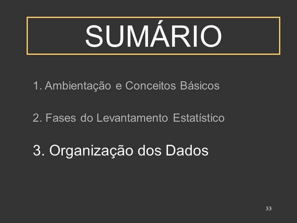 SUMÁRIO 3. Organização dos Dados 1. Ambientação e Conceitos Básicos