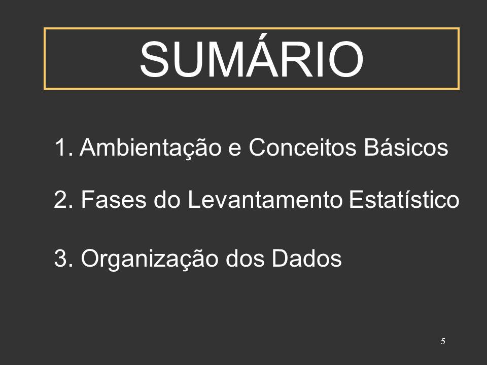 SUMÁRIO 1. Ambientação e Conceitos Básicos 2. Fases do Levantamento Estatístico.