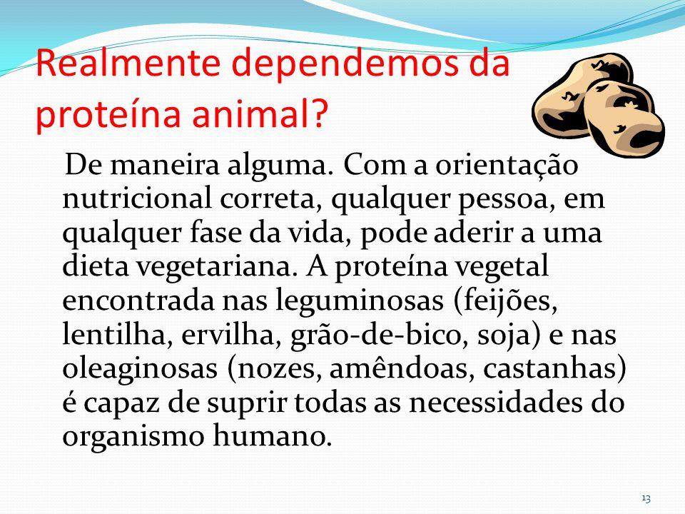 Realmente dependemos da proteína animal