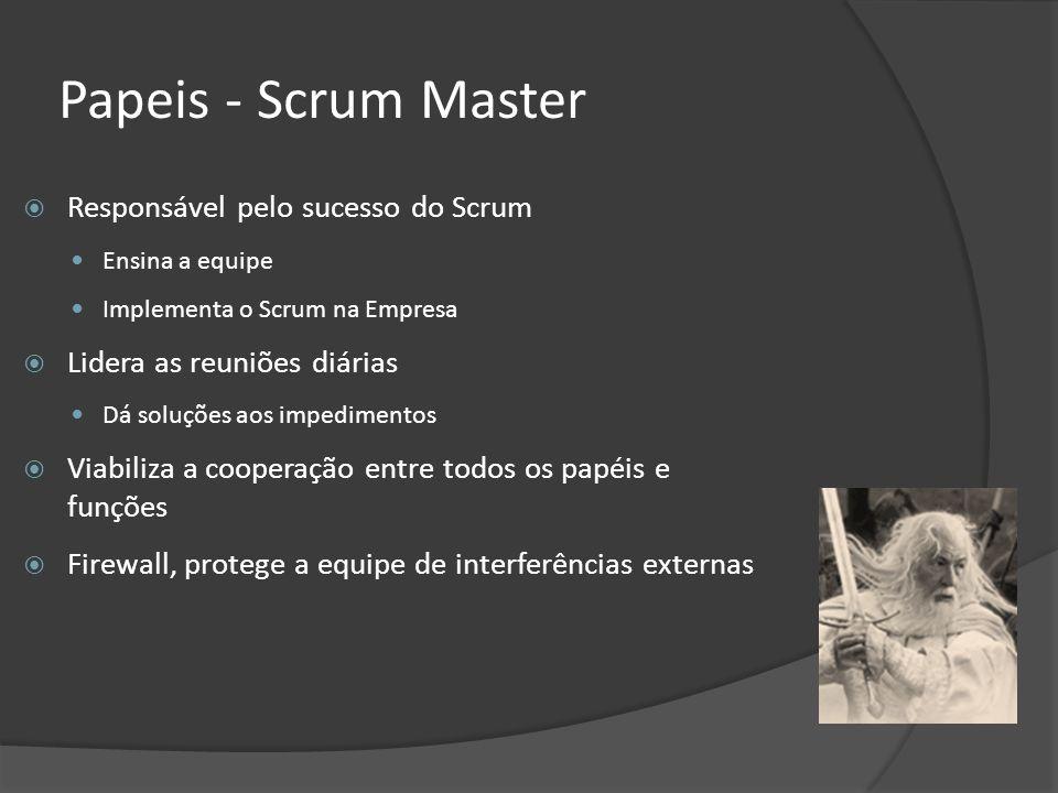 Papeis - Scrum Master Responsável pelo sucesso do Scrum