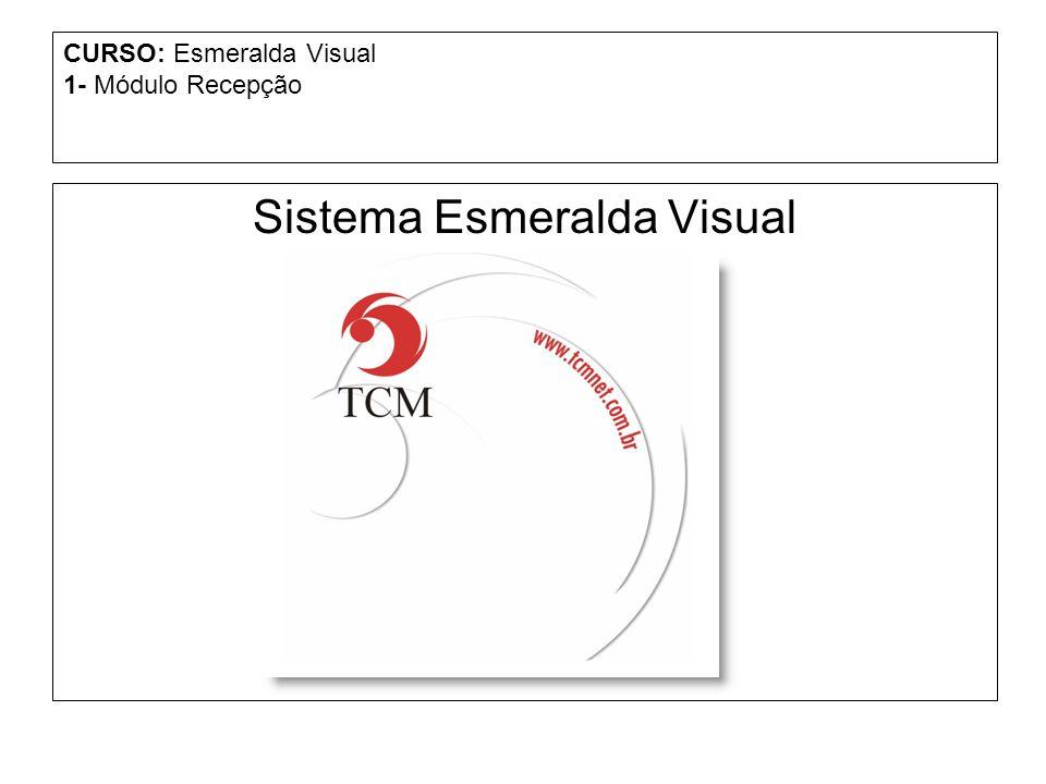 CURSO: Esmeralda Visual 1- Módulo Recepção