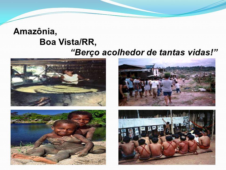 Amazônia, Boa Vista/RR, Berço acolhedor de tantas vidas!