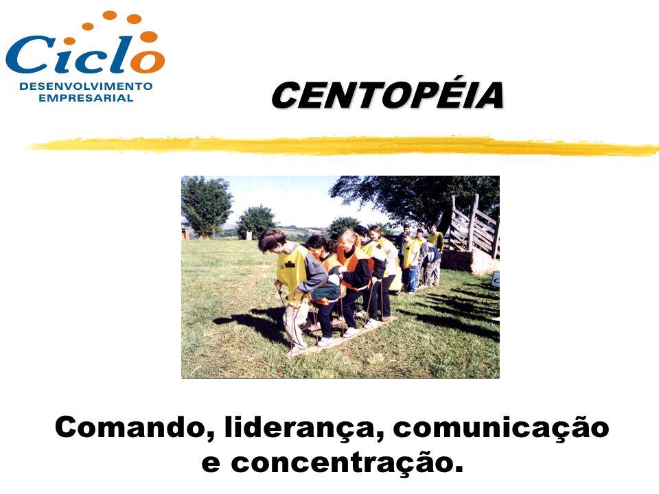 Comando, liderança, comunicação e concentração.