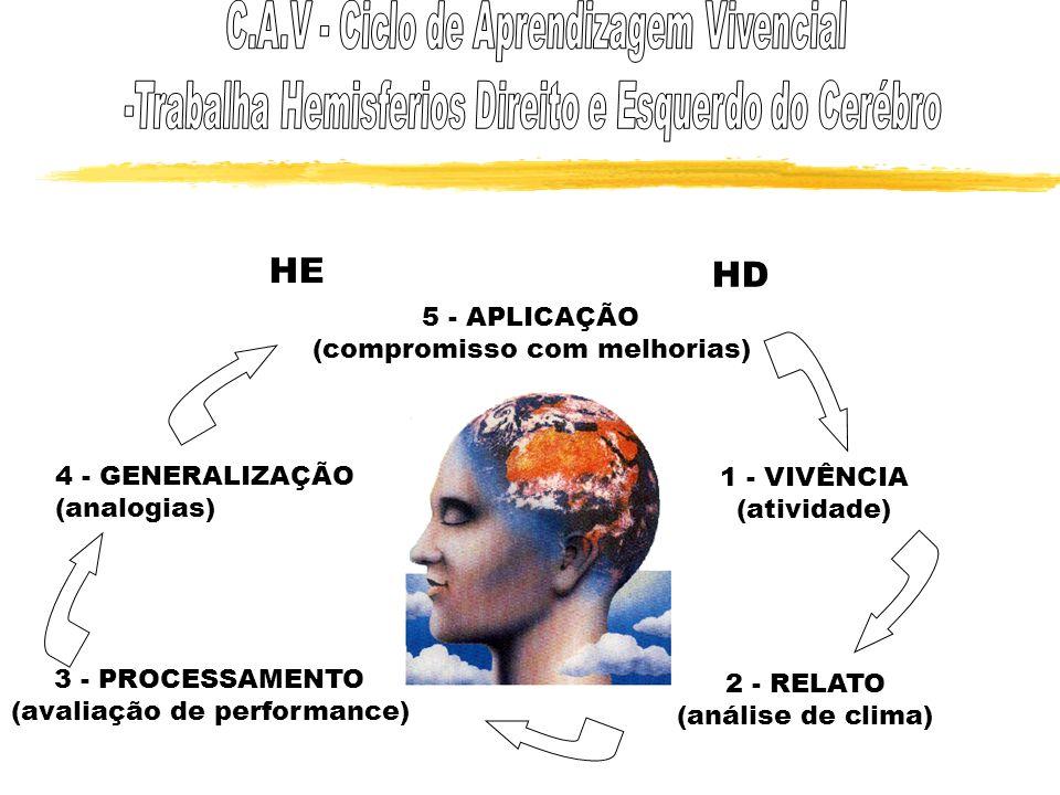 HE HD C.A.V - Ciclo de Aprendizagem Vivencial