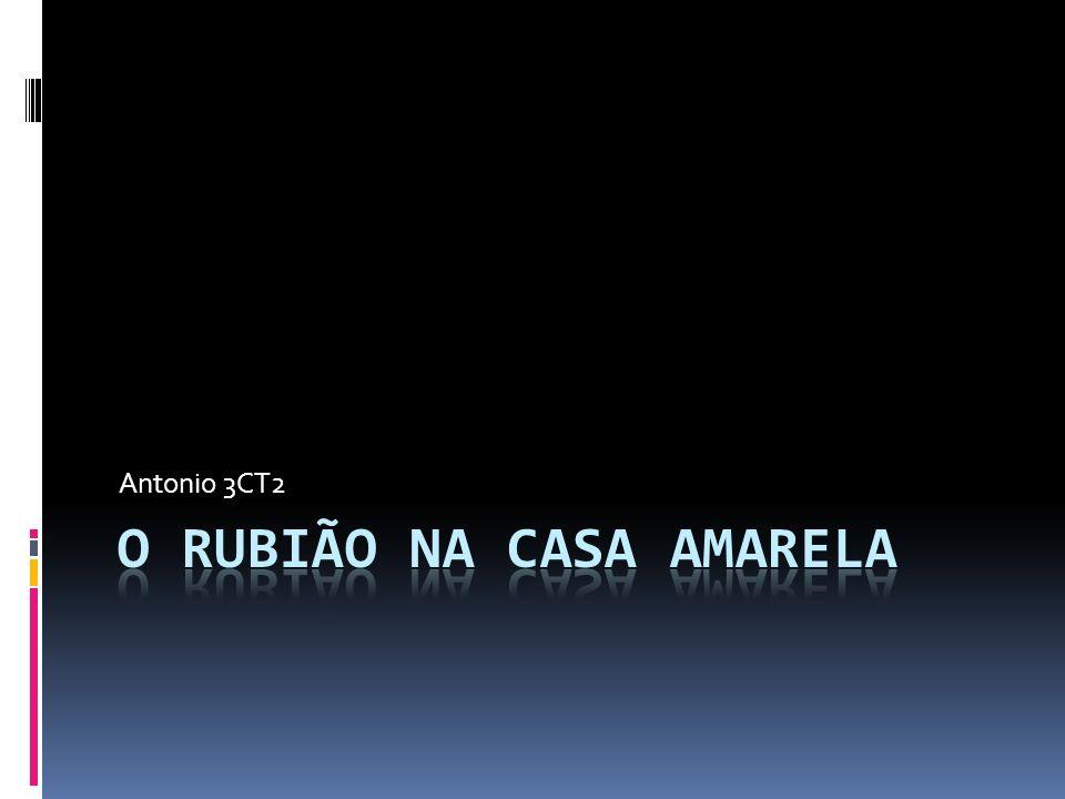 O RuBIÃO NA CASA AMARELA