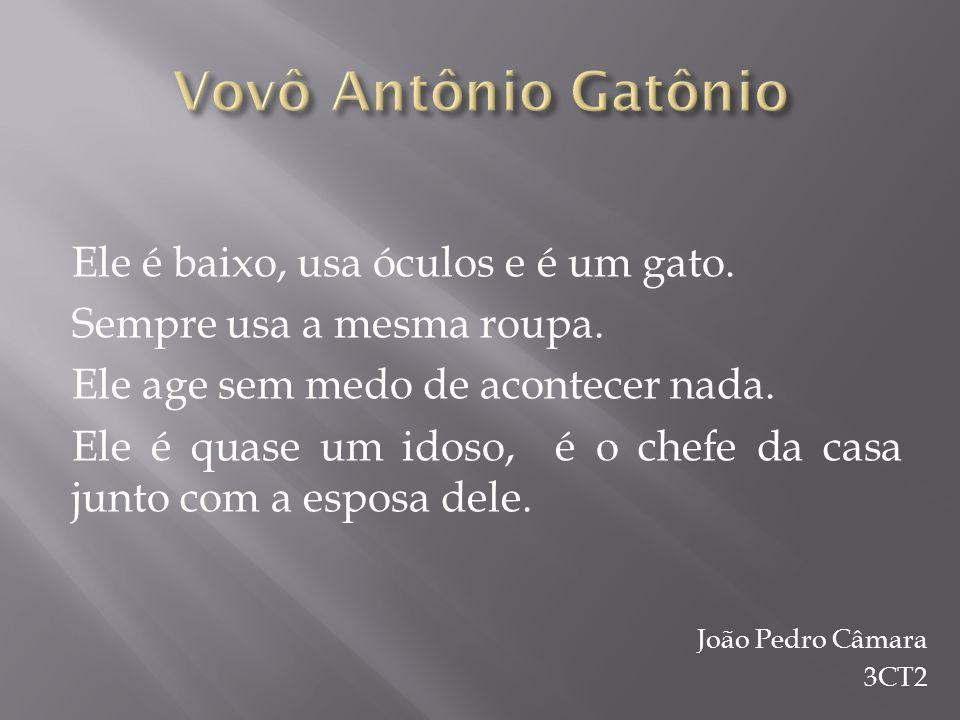 Vovô Antônio Gatônio