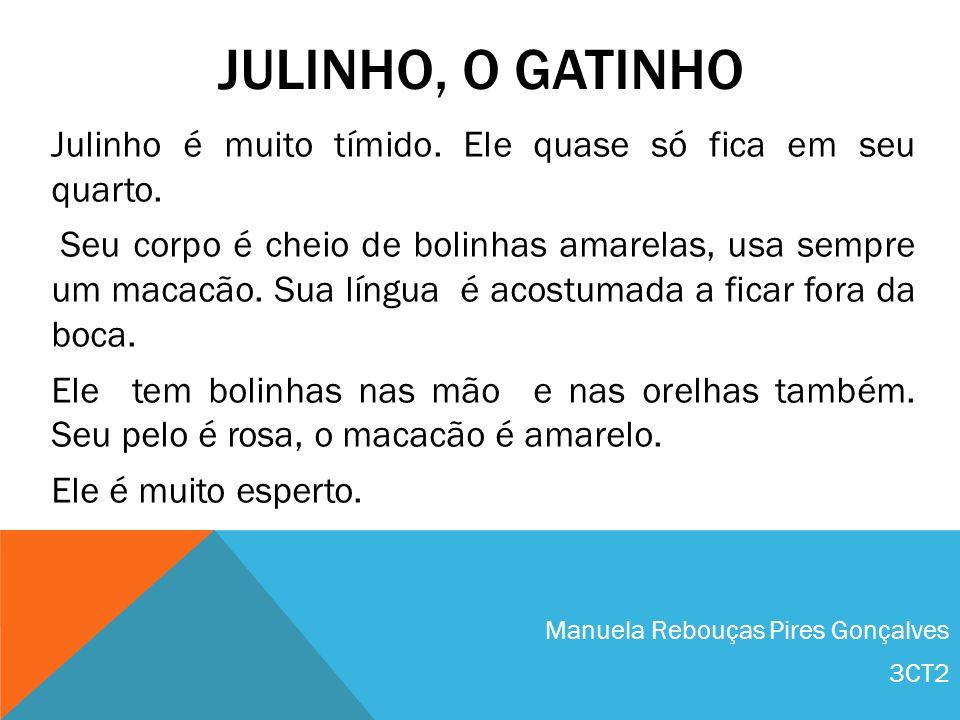 Julinho, o Gatinho