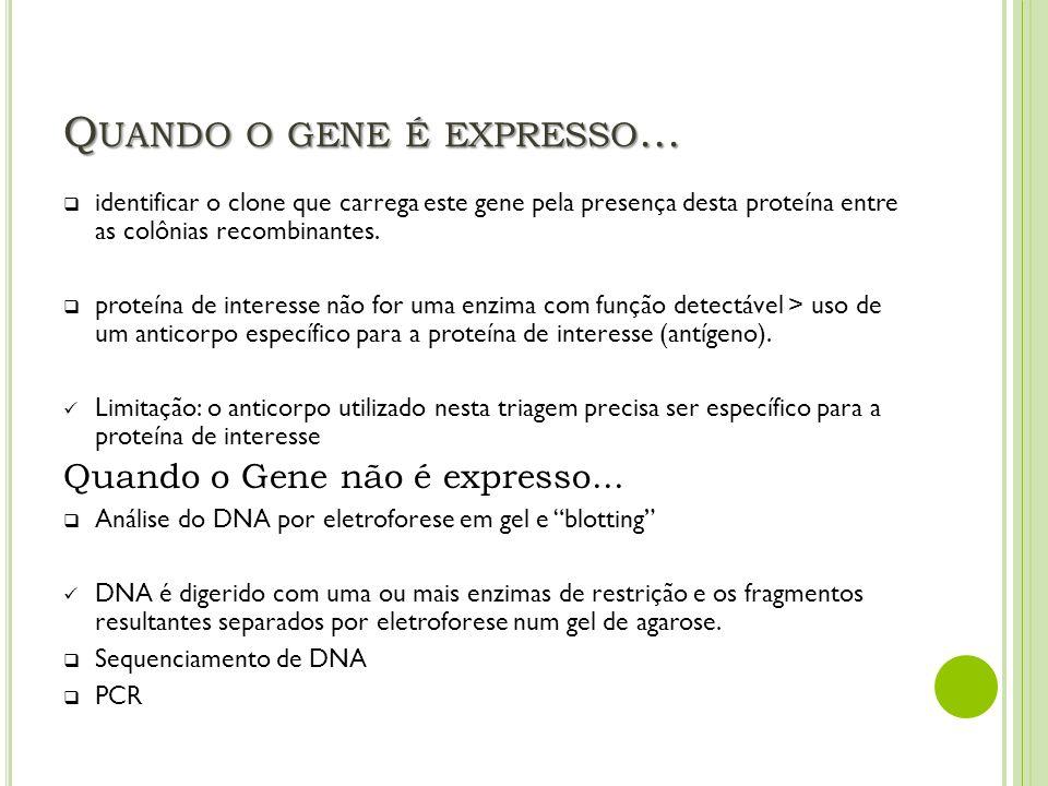 Quando o gene é expresso...
