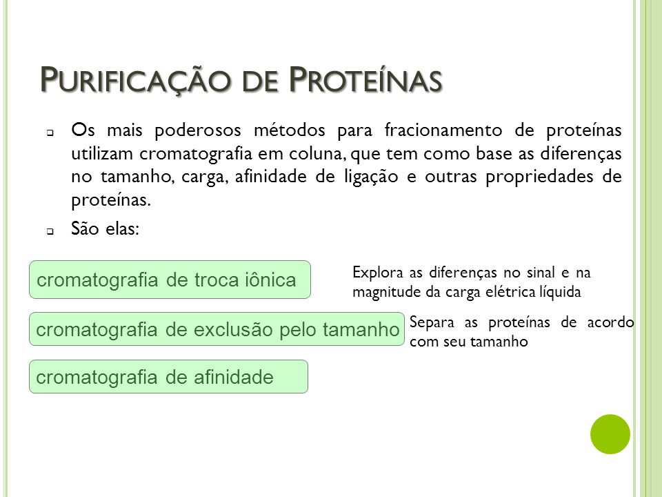 Purificação de Proteínas