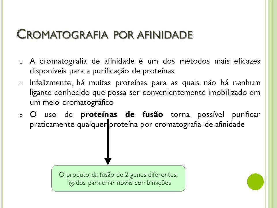 Cromatografia por afinidade