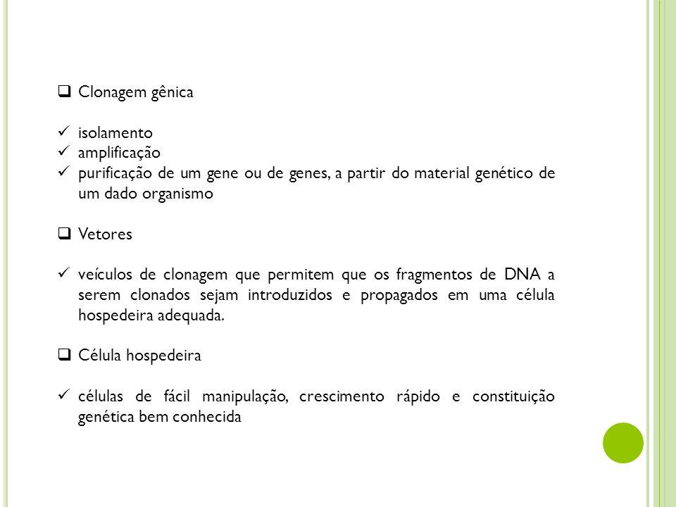 Clonagem gênica isolamento. amplificação. purificação de um gene ou de genes, a partir do material genético de um dado organismo.