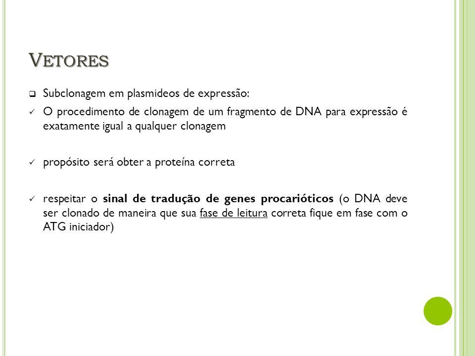 Vetores Subclonagem em plasmideos de expressão: