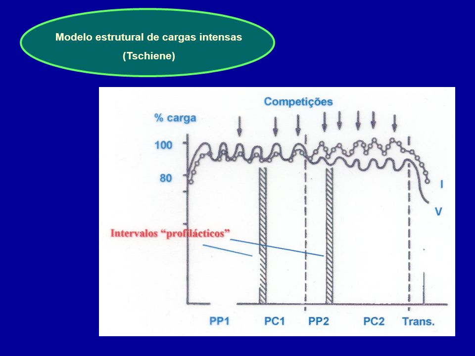 Modelo estrutural de cargas intensas