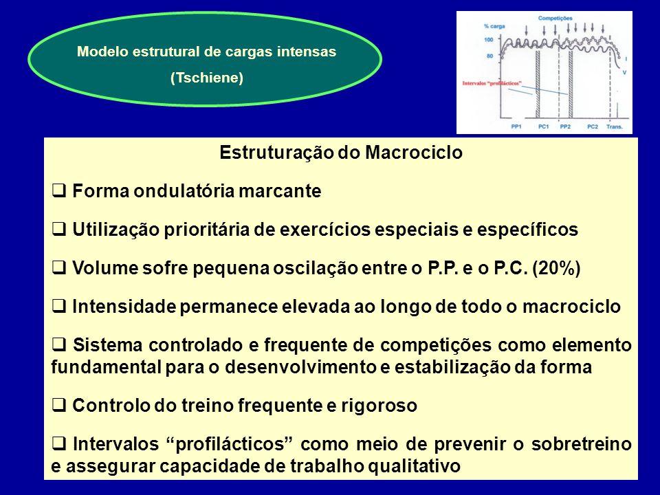 Modelo estrutural de cargas intensas Estruturação do Macrociclo