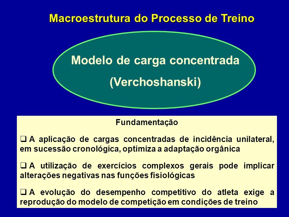 Macroestrutura do Processo de Treino