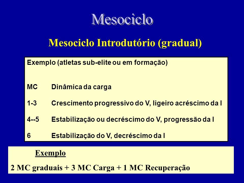 Mesociclo Introdutório (gradual)