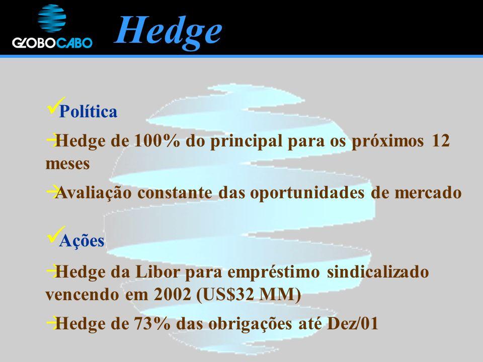 Hedge Política Hedge de 100% do principal para os próximos 12 meses