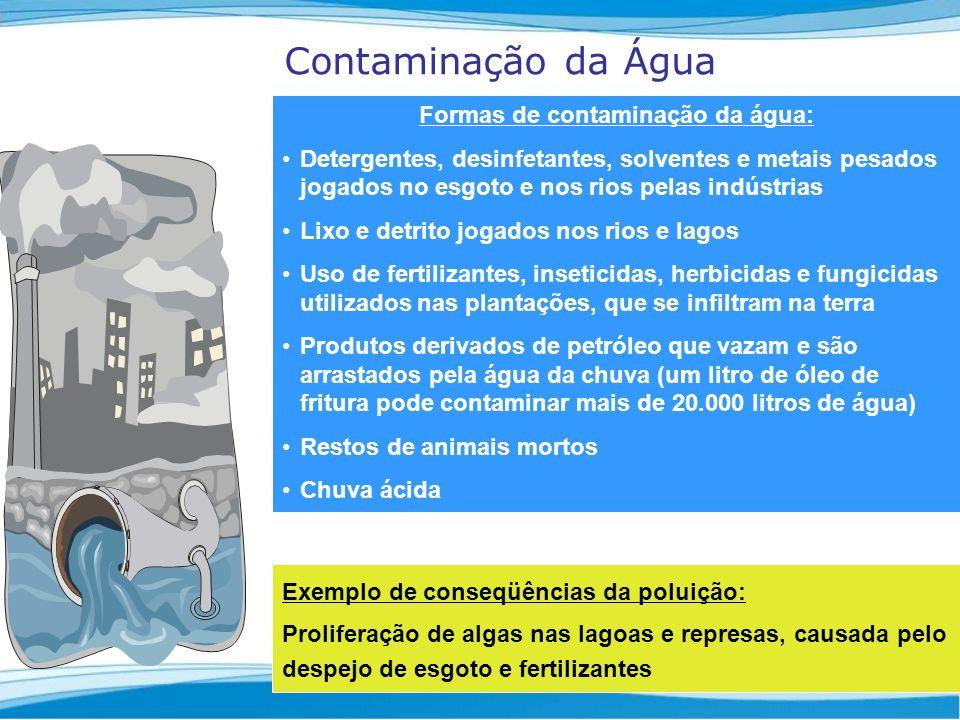 Formas de contaminação da água: