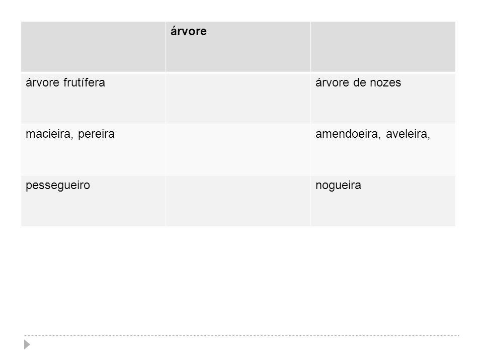 árvore árvore frutífera. árvore de nozes. macieira, pereira. amendoeira, aveleira, pessegueiro.