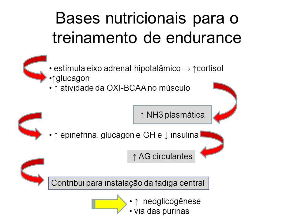 Bases nutricionais para o treinamento de endurance