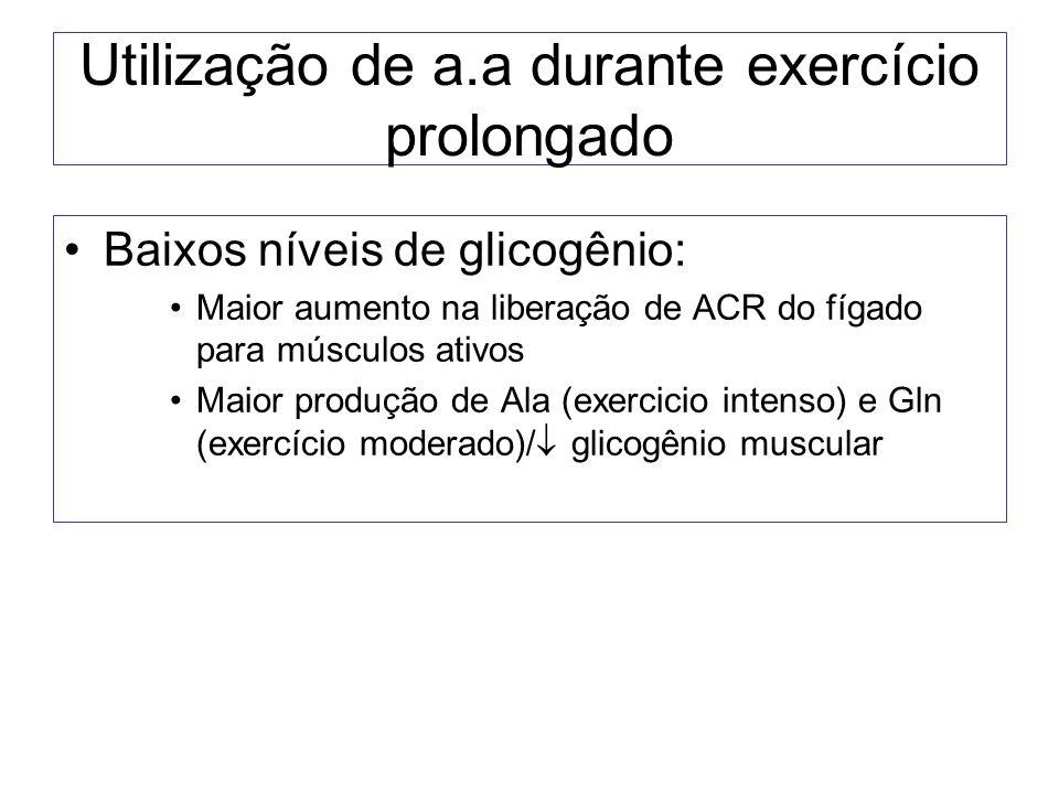 Utilização de a.a durante exercício prolongado