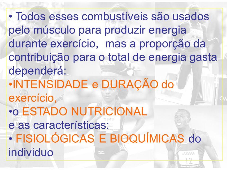 Todos esses combustíveis são usados pelo músculo para produzir energia durante exercício, mas a proporção da contribuição para o total de energia gasta dependerá: