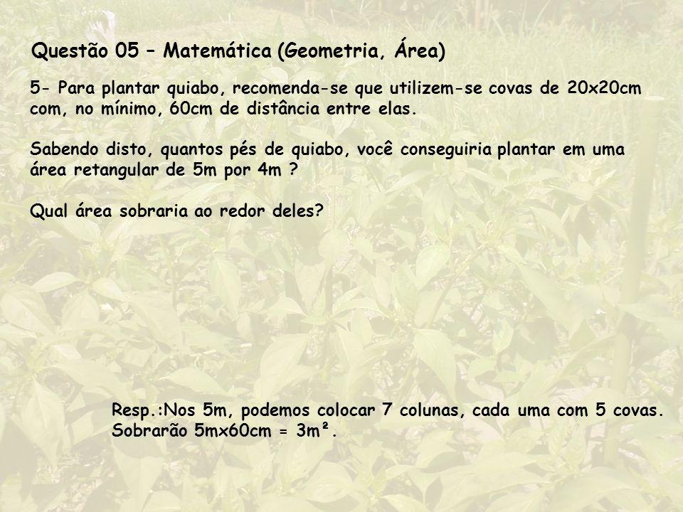 Questão 05 – Matemática (Geometria, Área)