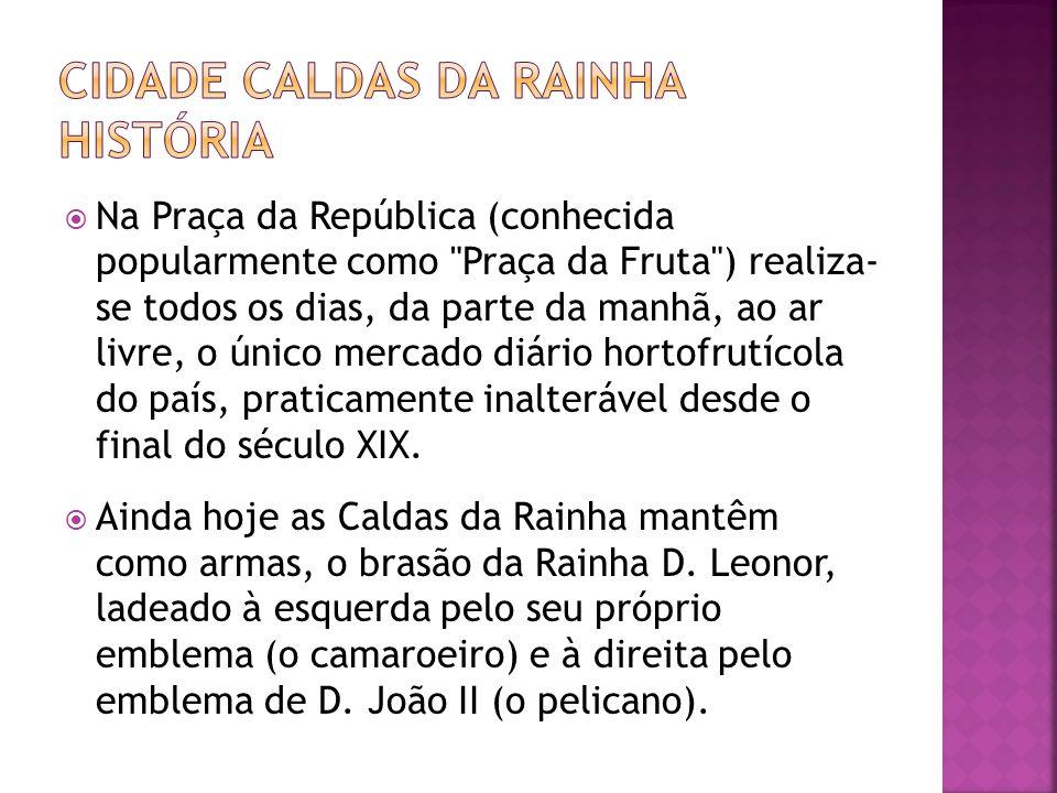 CIDADE CALDAS DA RAINHA HISTÓRIA