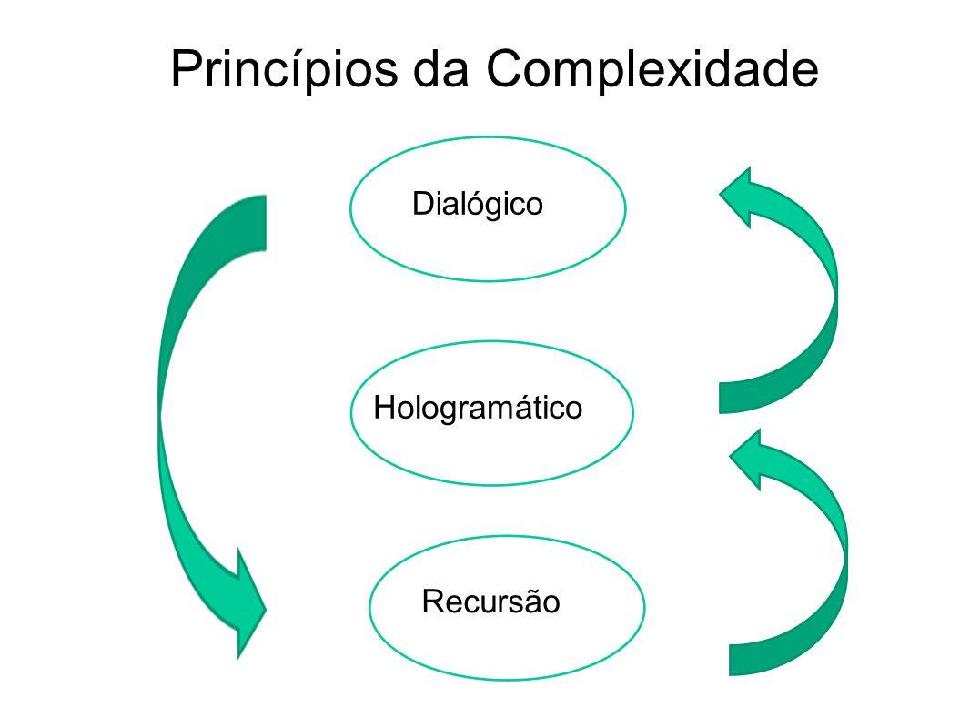 Princípios da Complexidade