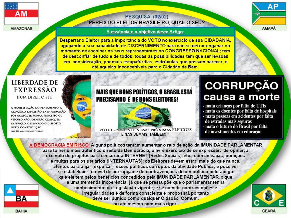PESQUISA: (02/02) PERFIS DO ELEITOR BRASILEIRO, QUAL O SEU