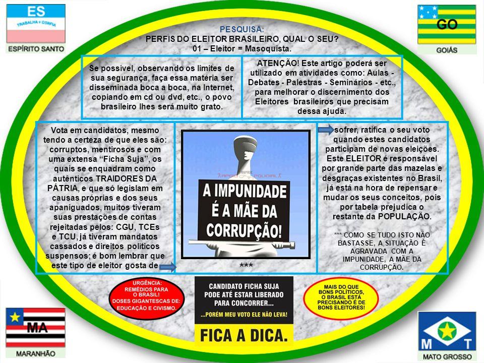 PESQUISA: PERFIS DO ELEITOR BRASILEIRO, QUAL O SEU