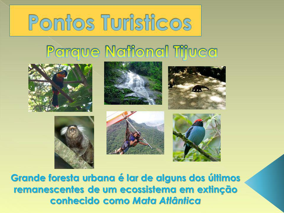 Parque National Tijuca