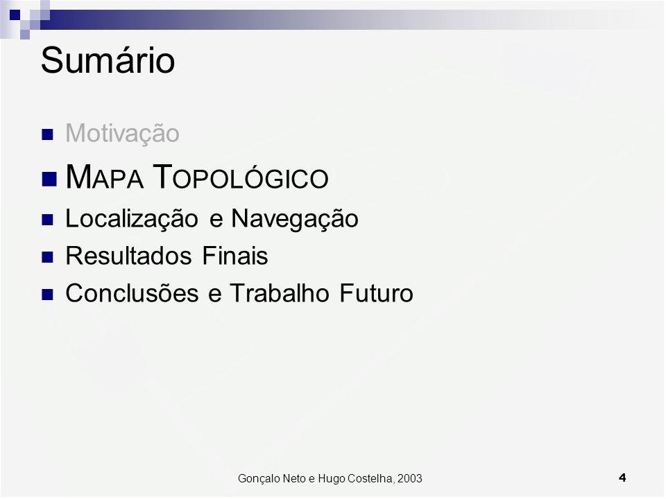 Gonçalo Neto e Hugo Costelha, 2003