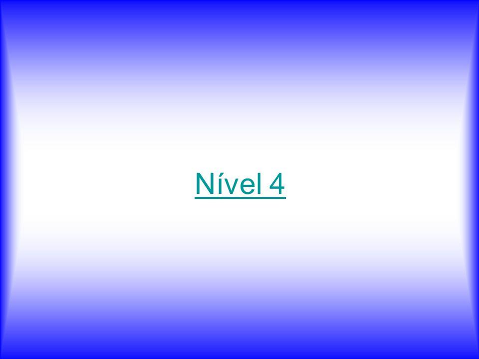 Nível 4