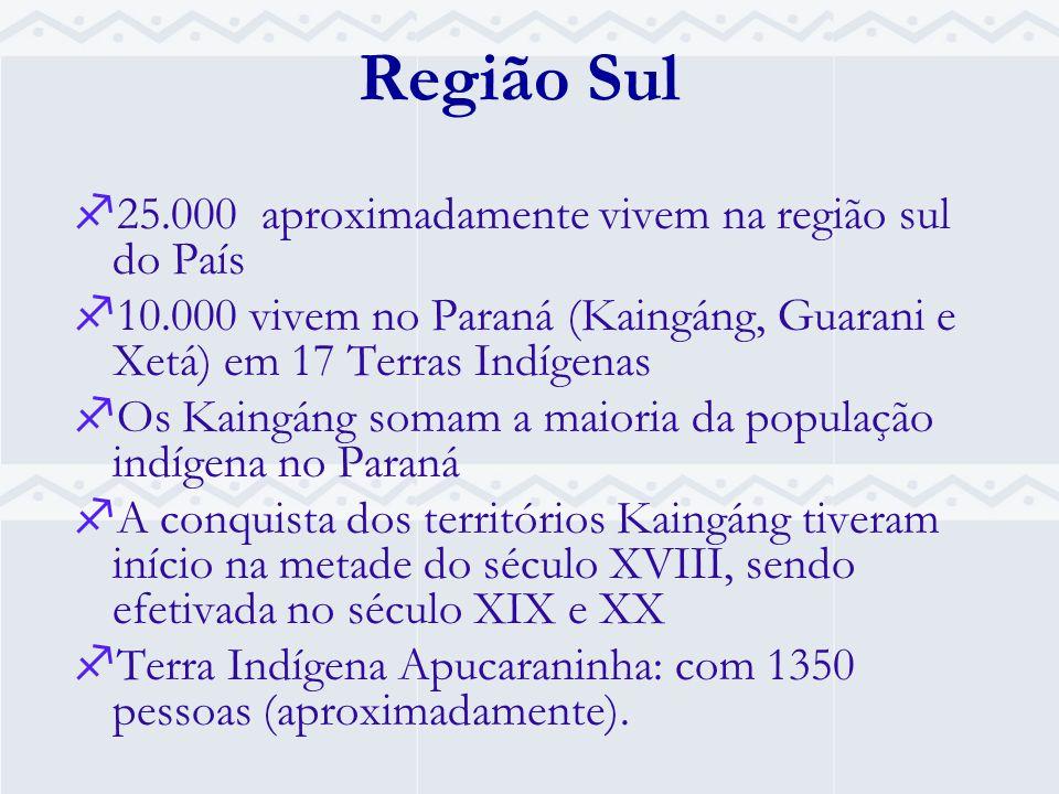 Região Sul 25.000 aproximadamente vivem na região sul do País