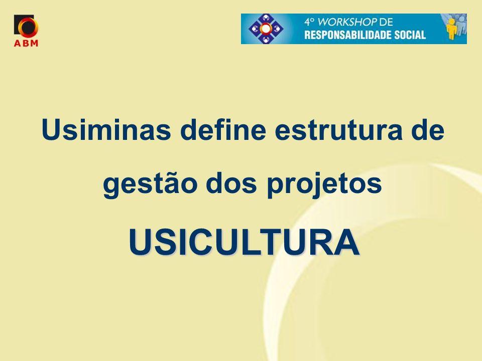 Usiminas define estrutura de gestão dos projetos USICULTURA