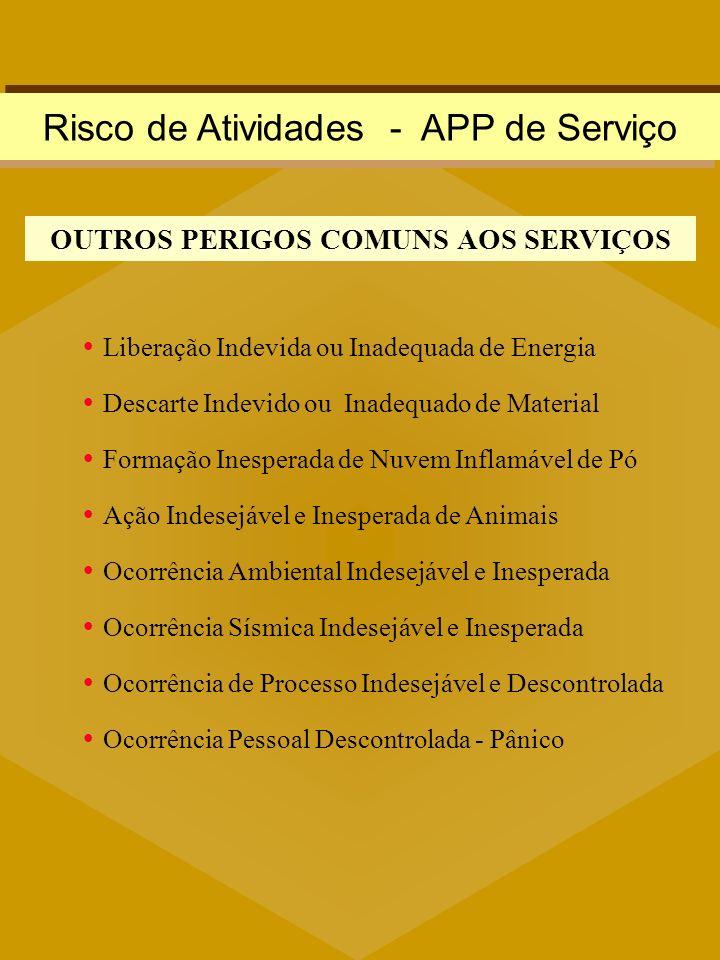 OUTROS PERIGOS COMUNS AOS SERVIÇOS
