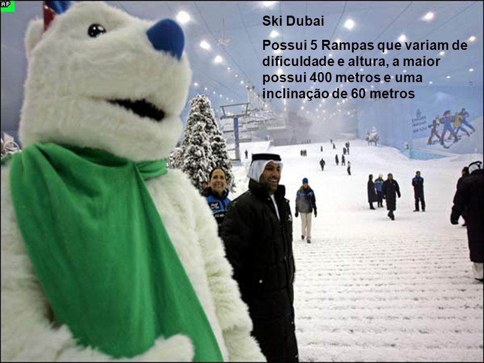 Ski Dubai Possui 5 Rampas que variam de dificuldade e altura, a maior possui 400 metros e uma inclinação de 60 metros.